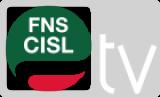 TG CISL - Contratti: Sciopero statali. Furlan: le risorse si trovano