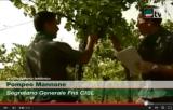 Dichiarazione P. Mannone al Tg Cisl su Madia e CFS