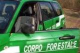 Conquiste del Lavoro: Sicurezza 'No eliminazione Corpo Forestale dello Stato'